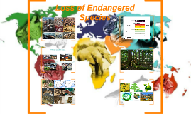 The Loss of Endangered Species