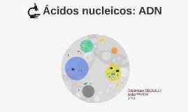 Ácido nucleico: ADN