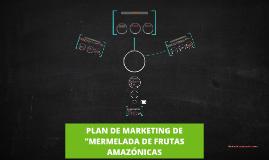 """Copy of PLAN DEL MARKETING """"MERMELADAS DE FRUTAS AMAZONICAS"""""""