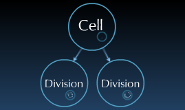 Biology: Cell division