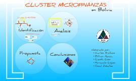 Copy of Cluster Microfinanzas - Bolivia