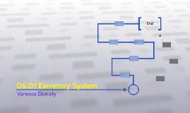 06.01 Excretory System