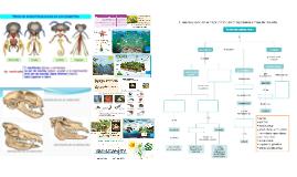 La diversidad de formas y funciones es resultado de la evolución