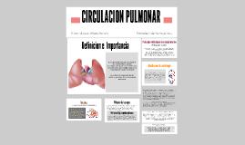 Copy of CIRCULACION SANGUINEA