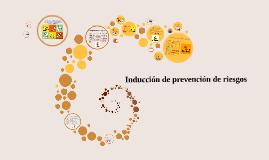 Inducción de prevencion de riesgos para área técnica