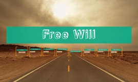Copy of Copy of Free Will
