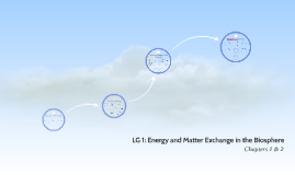 LG 1: Energy and Matter Exchange in the Biosphere