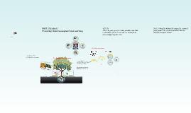 Reggio Emilia Experience &Visual-Spatial Learners