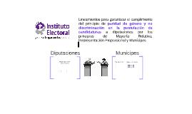 Lineamientos PRI