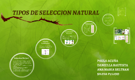TIPOS DE SELECCION NATURAL