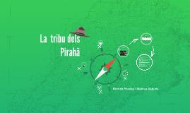 La tribu dels Piraha