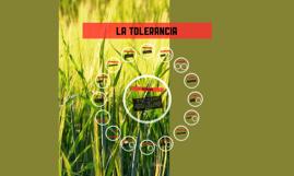 Copy of LA TOLERANCIA