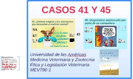 CASOS 41 Y 45