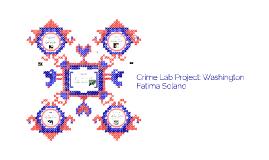 Crime Lab Project Washington