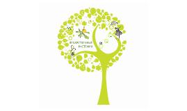 Copy of Шаблон презентации о растениях
