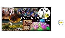 "EXPO VIRTUAL ""EMPRENDIMIENTOS"" 2013 I"