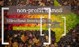 Non-Profit Names