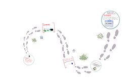Las acción de las enzimas en los procesos metabolicos