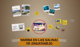 MARINA EN LAS SALINAS DE ZIHUATANEJO