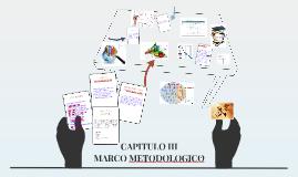 Copy of Copy of CAPITULO III