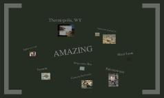 Thermopolis Dinosaur Museum