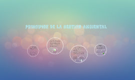 PRINCIPIOS DE LA GESTION AMBIENTAL