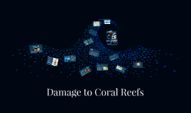 Damage to Coral Reefs
