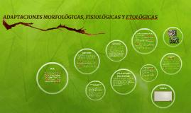 ADAPTACIONES MORFOLÓGICAS, FISIOLOGICAS Y ETOLOGICAS