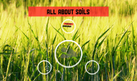 All about soils