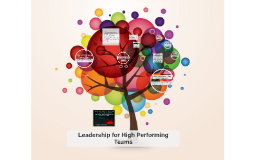 Leadership for High Performing Teams