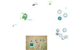 1. Green Key's environmental education (English script)