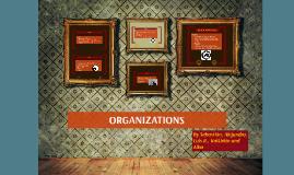 ORGANIZATIONS (final)
