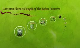 Common Flora of the Tobin Preserve