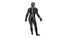 Neurofibromatosis