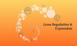 Gene Regulation & Expression