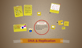 DNA & Replication