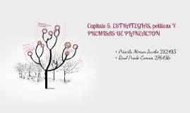Copy of Capitulo 5ESTRATEGIAS, políticas Y PREMISAS DE PLANEACION