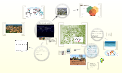 A Brief look at Environmental History