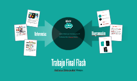 Trabajo Final Flash