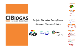 Copy of Projeto Florestas Energéticas - CVale