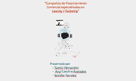 Copy of Compañias de Financiamiento Comercial especializadas en leas
