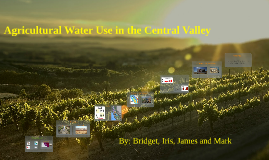Copy of Central Valley AVA