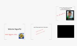 Copy of Interim Reports