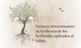 Factores determinantes de la eficacia de los herbicidas apli