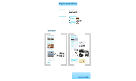 Copy of Arquitectura efímera: concepto y ejemplos