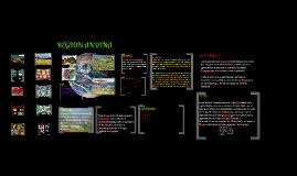 Copy of REGION ANDINA