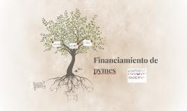 Copy of Financiamiento de pymes