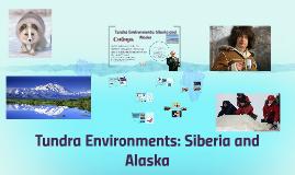 Tundra Environments: Siberia