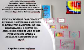 IDENTIFICACIÓN DE CAPACIDADES Y RECURSOS ORIENTADOS A MEJORA