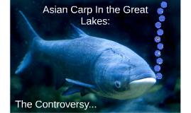 Asian Carp Controversy